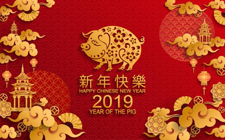 Когда наступит год Свиньи по восточному календарю