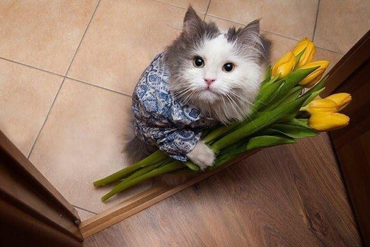 Какой праздник сегодня, 1 марта, отмечают в России и мире