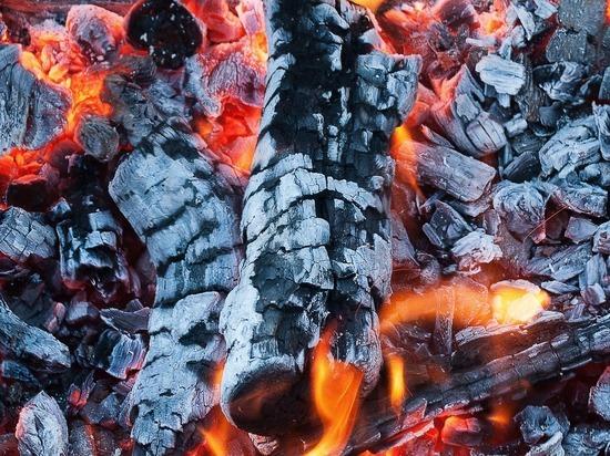 Мальчик получил страшные ожоги во время приготовление шашлыков на даче